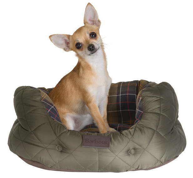 Quilted Dog Bed Small